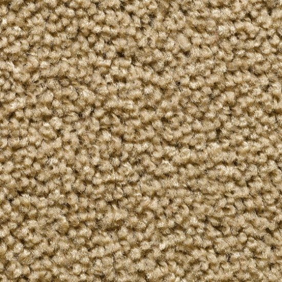 corona-wykladzina-dywanowa-w-rolce.15