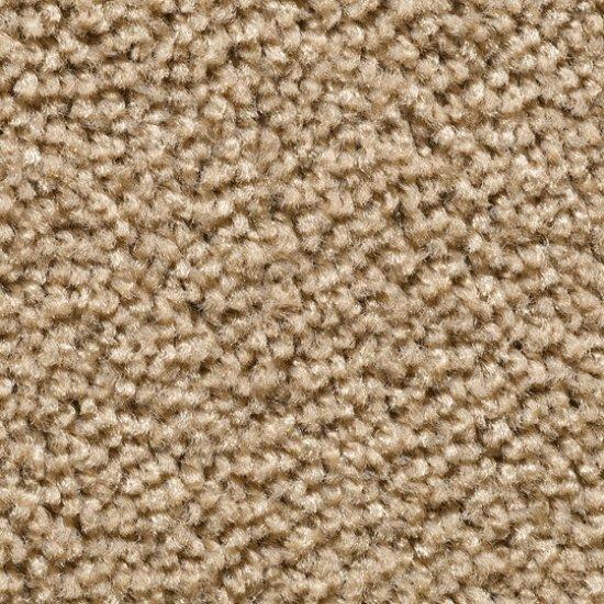 corona-wykladzina-dywanowa-w-rolce.3