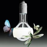 johnny-b-butterfly_lampa_sufitowa_zwieszana (1)